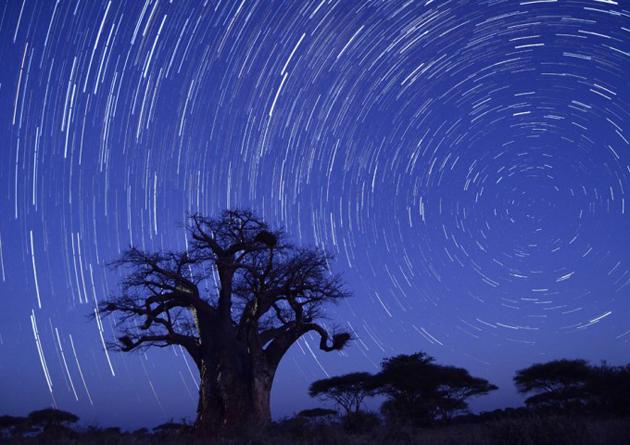Stargazing Safari at Singita Pamushana Lodge